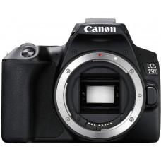 CANON EOS camera 250D Body Black (3454C005)