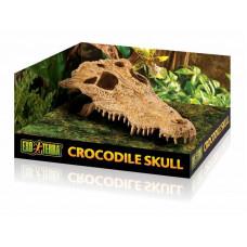 Exo Terra (Ekzo Terra) Crocodile Skull - Scenery shelter Skull of a crocodile