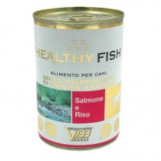 Healthy Fish - A tinned forage with a salmon and rice for dogs (paste)