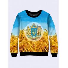 Mens 3D-print sweatshirt - Symbols of Ukraine. Made in Ukraine.